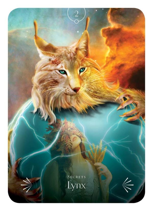Oraculo Sabedoria Divina dos Animais